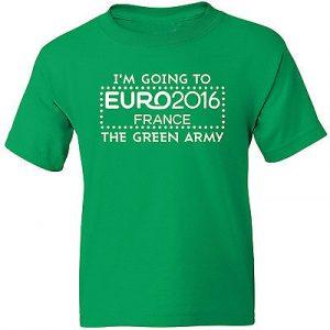 Ponturi fotbal Euro Irlanda vs Belarus